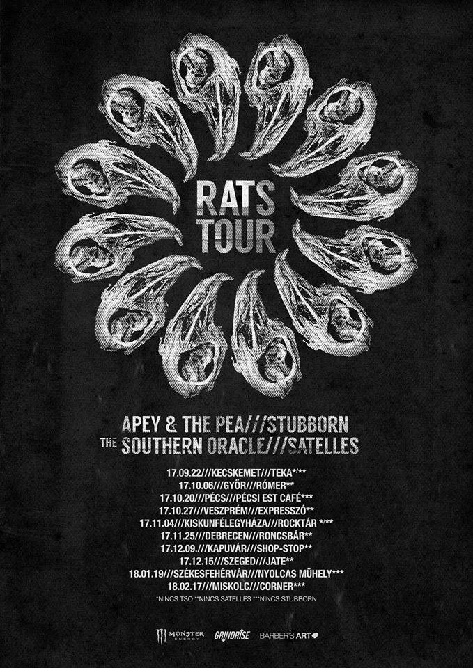 apey rats tour